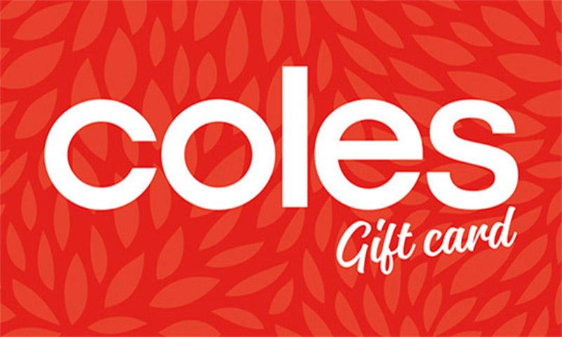 $500 WISH e-Gift Card